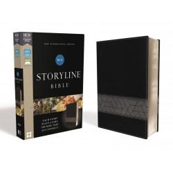 NIV Storyline Bible...