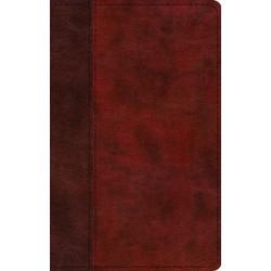 ESV Thinline Bible/Large...
