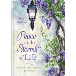 Peace In The Storms Of Life
