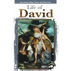 Life Of David Pamphlet...