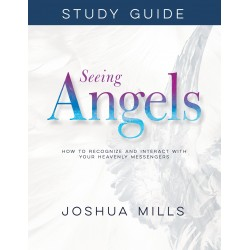 Seeing Angels Study Guide