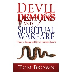 Devil Demons And Spiritual...