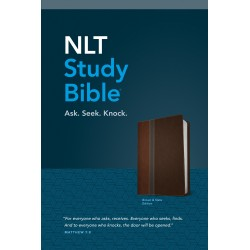 NLT Study Bible-Brown/Slate...