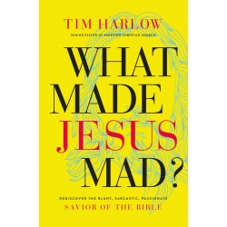 What Made Jesus Mad?-Hardcover