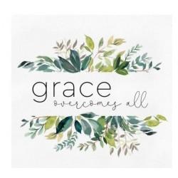 Canvas-Grace Overcomes All...