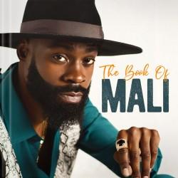 Audio CD-The Book Of Mali