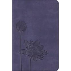 ESV Compact Bible-Lavender...