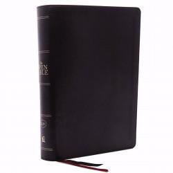 KJV Open Bible (Comfort...