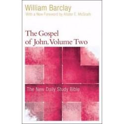 Gospel Of John V2 (New...