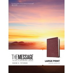 Message/Large Print Bible...