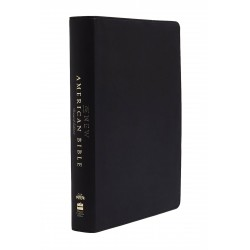 NABRE New American Bible...