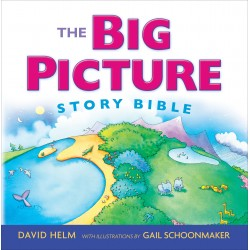 The Big Picture Story...