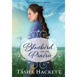 Bluebird on the Prairie...