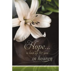 Bulletin-Hope IS Laid Up...