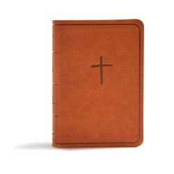 CSB On-The-Go Bible-Ginger...