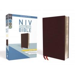 NIV Thinline Bible/Giant...