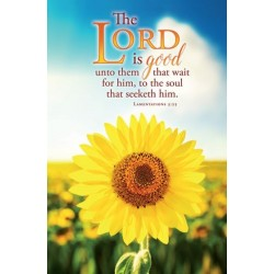 Bulletin-The Lord Is Good...