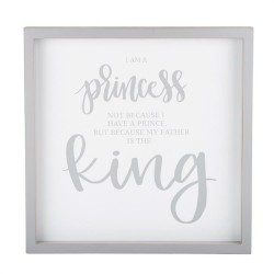Framed Board-Princess And...