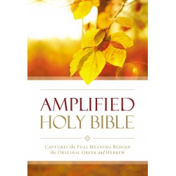 Amplified Outreach...