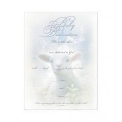 Certificate-Baby...
