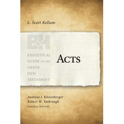 Acts (Exegetical Guide Go...
