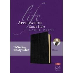 NKJV Life Application Study...
