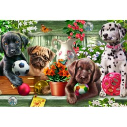 Jigsaw Puzzle-Garden...
