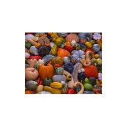 Jigsaw Puzzle-Autumn...