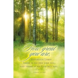 Bulletin-How Great You Are...