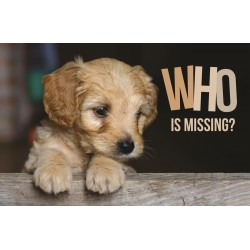 Postcard-Who Is Missing?...