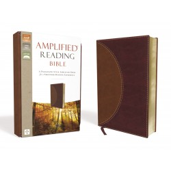 Amplified Reading...