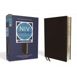 NIV Study Bible/Large Print...