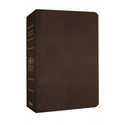 MEV Giant Print Bible-Brown...