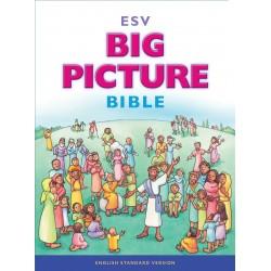 ESV Big Picture...