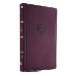 KJV Thinline Bible/Youth...