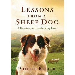 Lessons From A Sheep Dog...