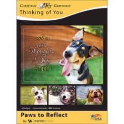 Card-Boxed-Paws To Reflect...