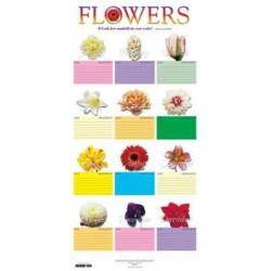 """Chart-Flower Chart (31"""" x..."""