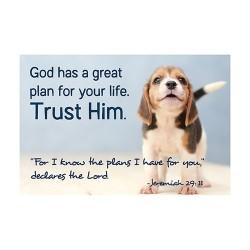 Cards-Pass It On-Trust Him...