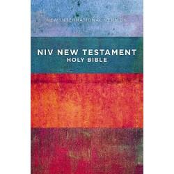 NIV Outreach New...