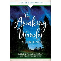 The Awaking Wonder Experience