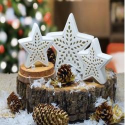 LED Star Set-Porcelain (Set...